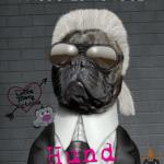 Autoreninterview mit Hasso Longnose